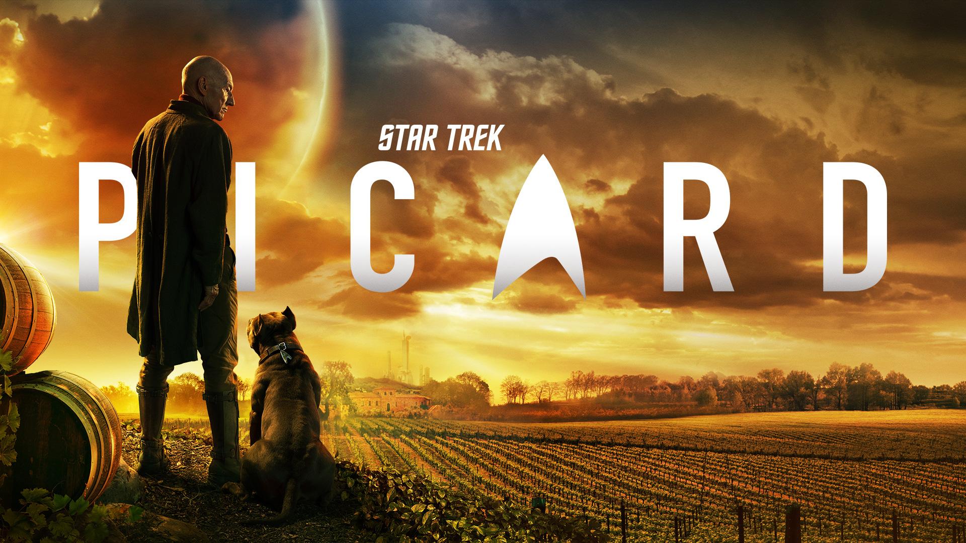 Star Trek Picard   Pixel Vault